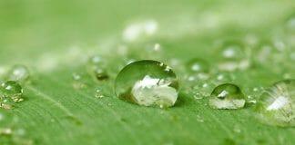 Constantia Flexibles, Nachhaltigkeit