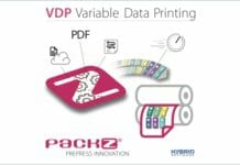 Hybrid Software, VDP,