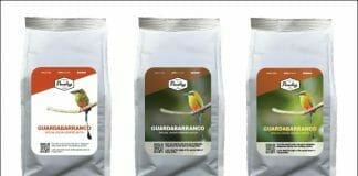 Magic Add, UPM Raflatac, Xeikon, Smart Labels,