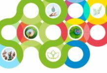Flint Group, Verpackungsdruckfarben, Nachhaltigkeitsbericht,