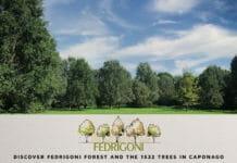 Fedrigoni, Umweltschutz, Klimaschutz,